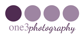 One 3 Photography logo